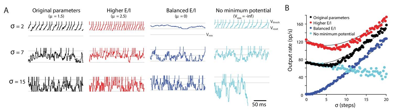 Cerebellar Purkinje cells control eye movements with a rapid