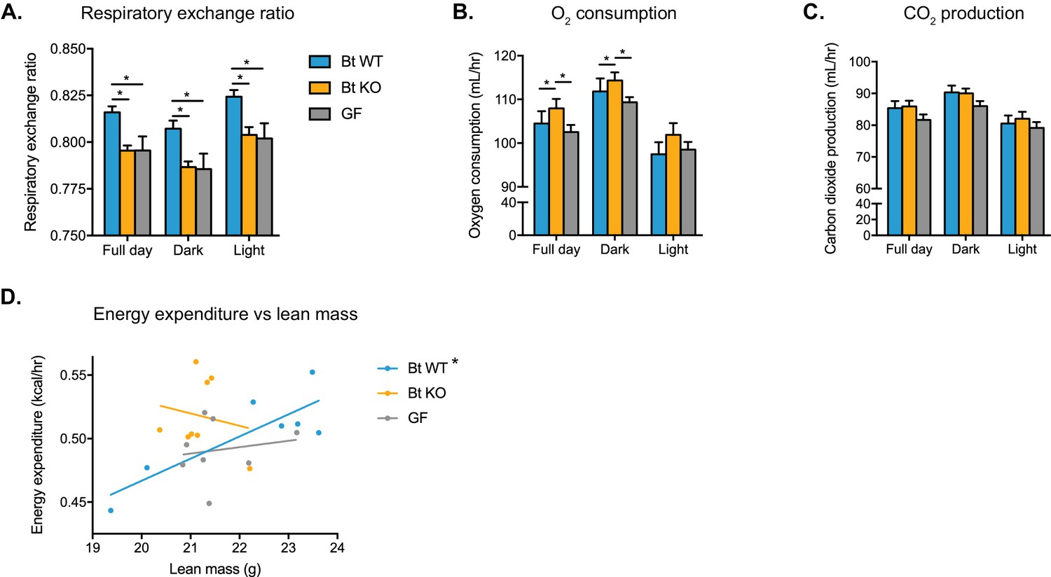 A Selective Gut Bacterial Bile Salt Hydrolase Alters Host Metabolism Voltage Divider Rule Vdr Calculator Electrical Technology Bt Wt Colonized Ko And Gf Mice Display Distinct Metabolic Phenotypes
