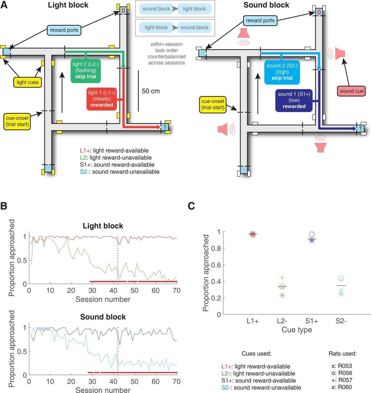 Persistent coding of outcome-predictive cue features in the rat