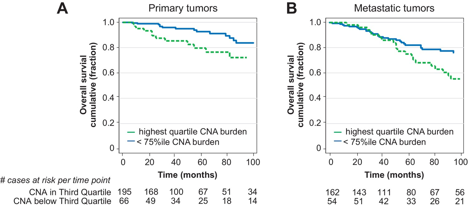 Tumor Copy Number Alteration Burden Is A Pan Cancer Prognostic Chevy 216 Engine Diagram Cna In Primary Prostate For Overall Survival When Assayed By Clinically Approved Sequencing Panel