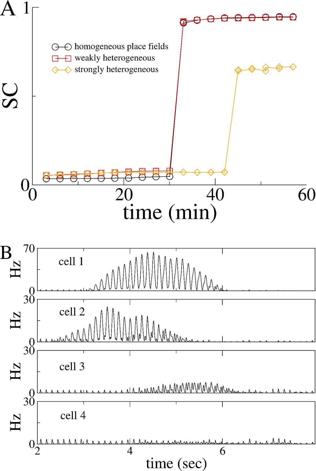 Theta-modulation drives the emergence of connectivity