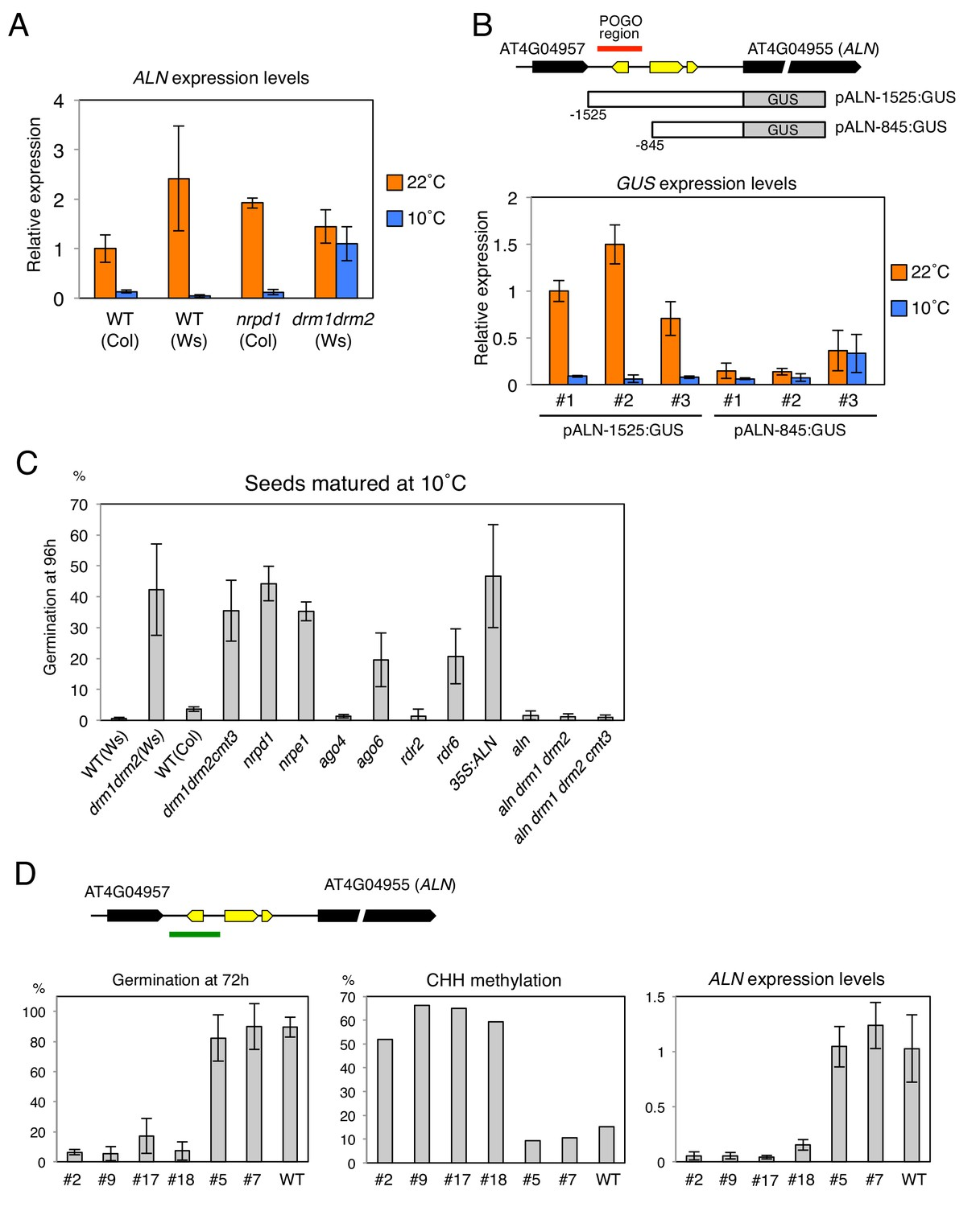 Non-canonical RNA-directed DNA methylation participates in maternal