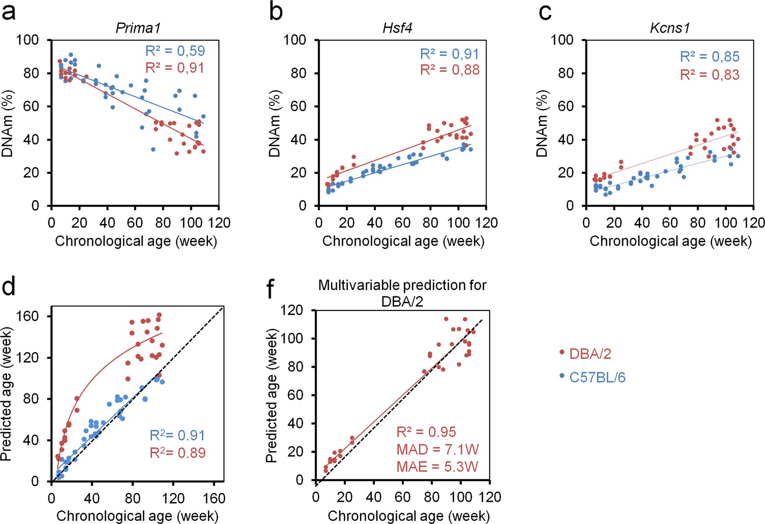 Epigenetic age-predictor for mice based on three CpG sites | eLife