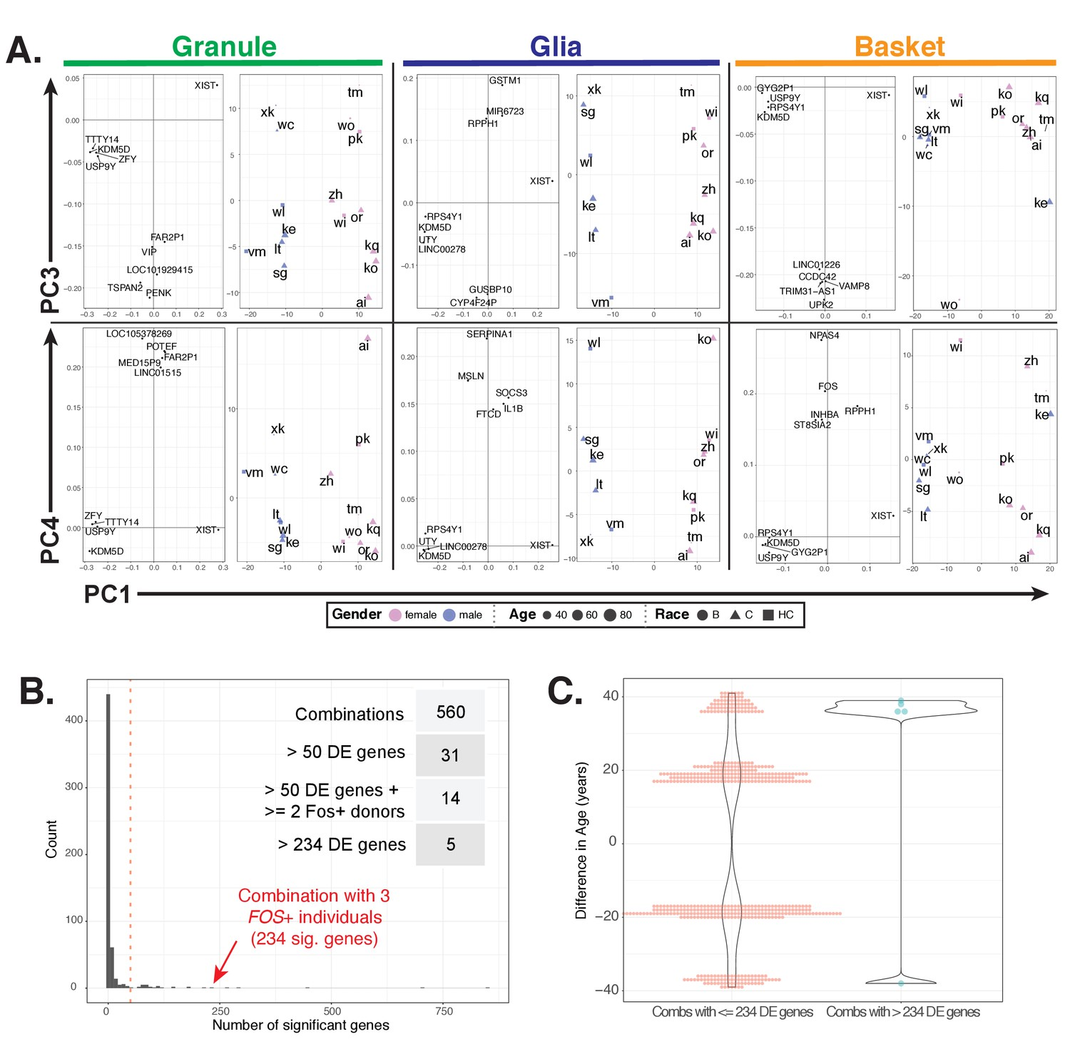 Species And Cell Type Properties Of Classically Defined Human Mains High Low Voltage Cut Off Circuit Using Ic 324 Explained Additional Analyses Interindividual Variability In Gene Expression Related To Figure 7
