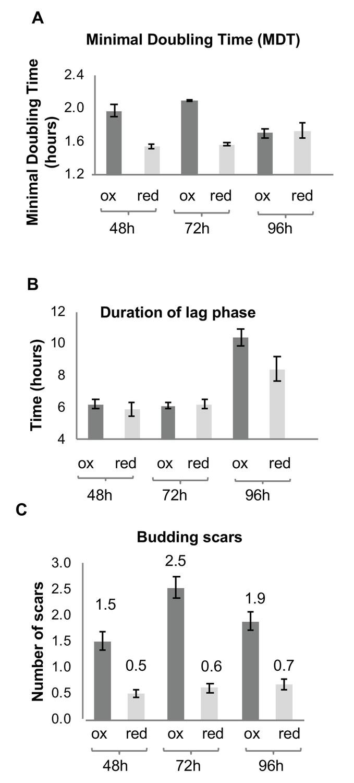Temporal profiling of redox-dependent heterogeneity in