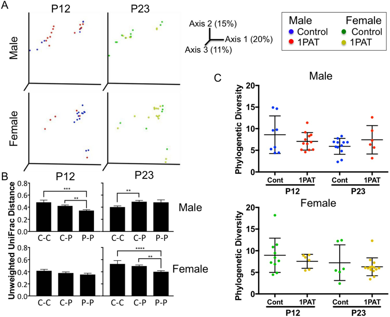 Ileal microbiota characteristics of male and female control and PAT NOD  mice.
