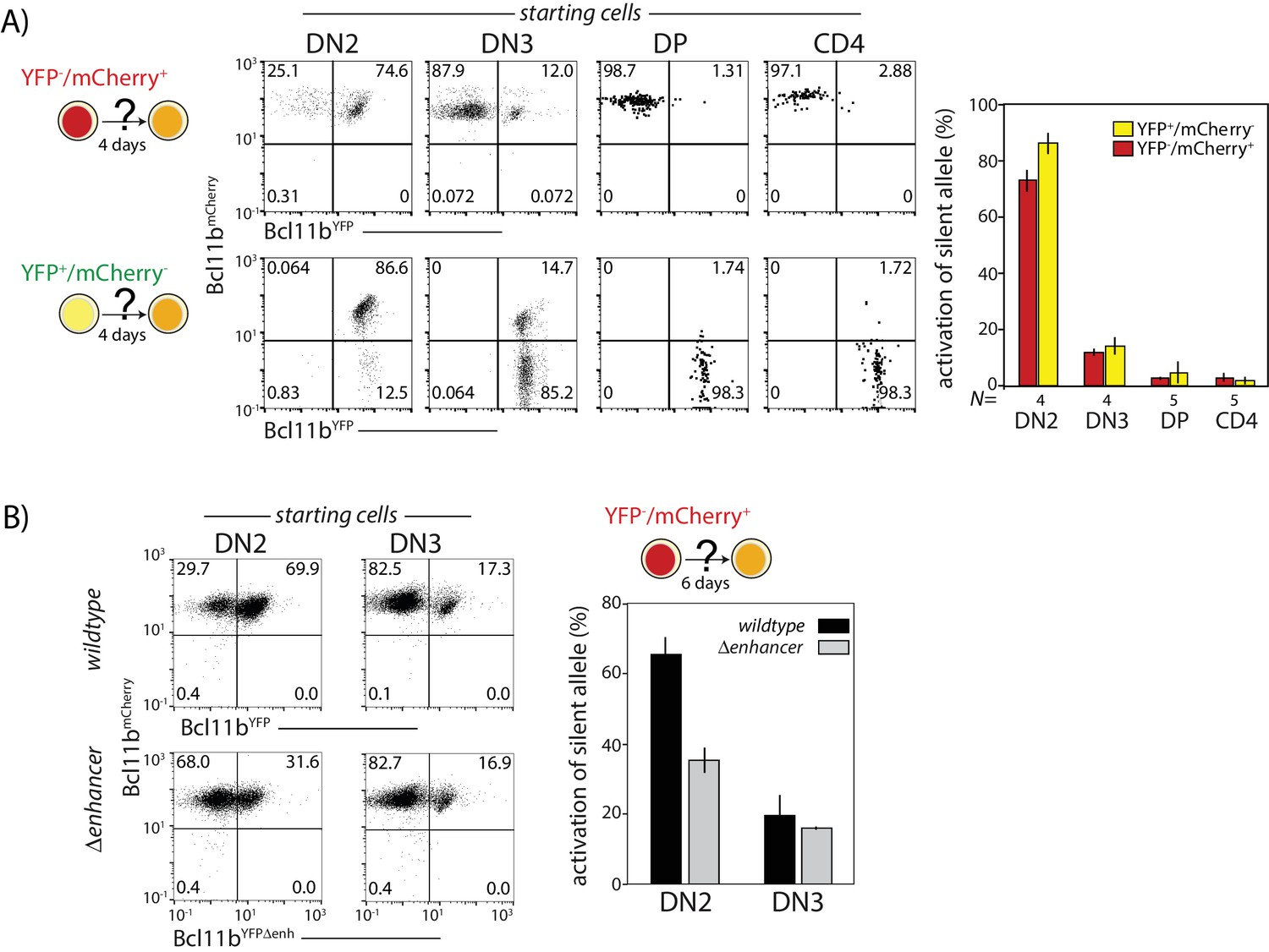 A stochastic epigenetic switch controls the dynamics of T-cell