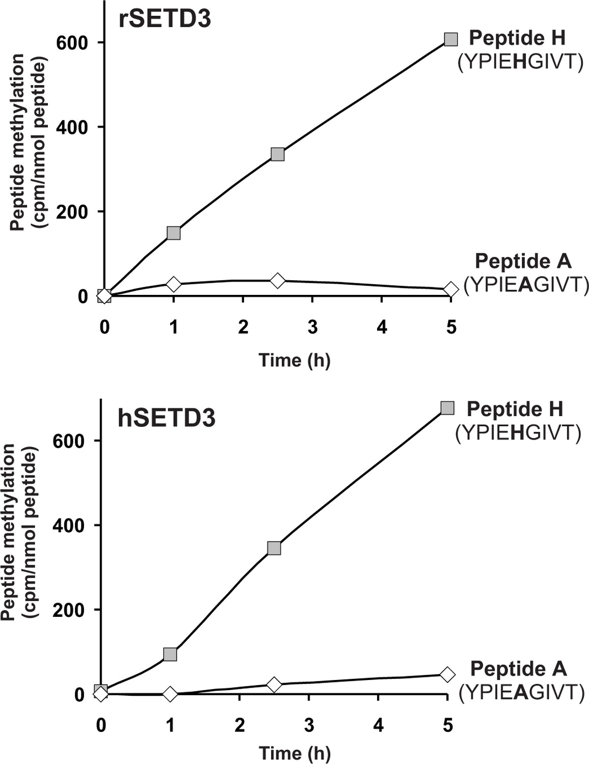 SETD3 protein is the actin-specific histidine N