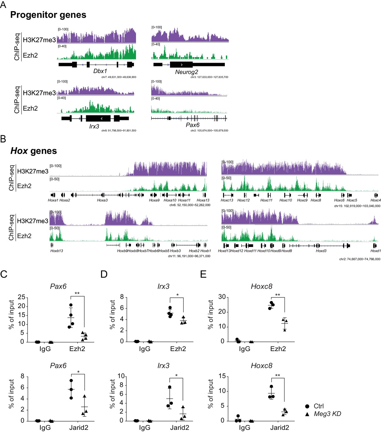 Dlk1 Dio3 Locus Derived Lncrnas Perpetuate Postmitotic Motor Neuron Triac Symbol In Addition Function Generator Circuit Likewise Pneumatic Ezh2 Binding And The H3k27me3 Landscape Escmns