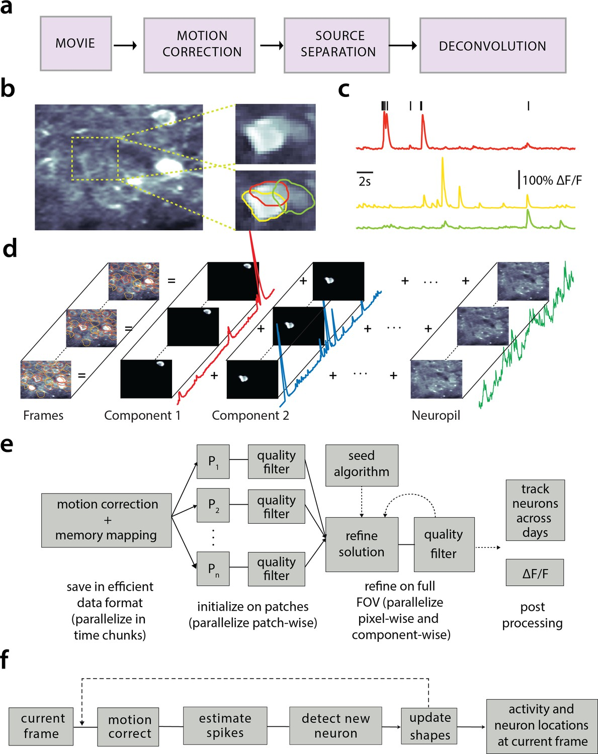 CaImAn an open source tool for scalable calcium imaging data