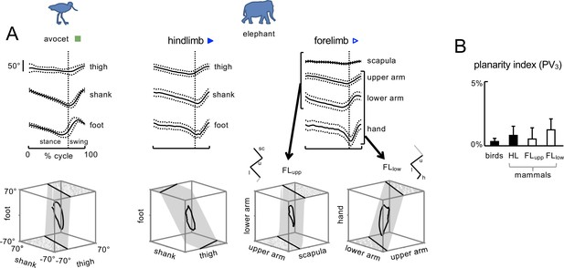 Figures and data in A kinematic synergy for terrestrial