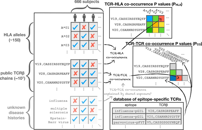 Matrix Structural Analysis Mcguire Pdf
