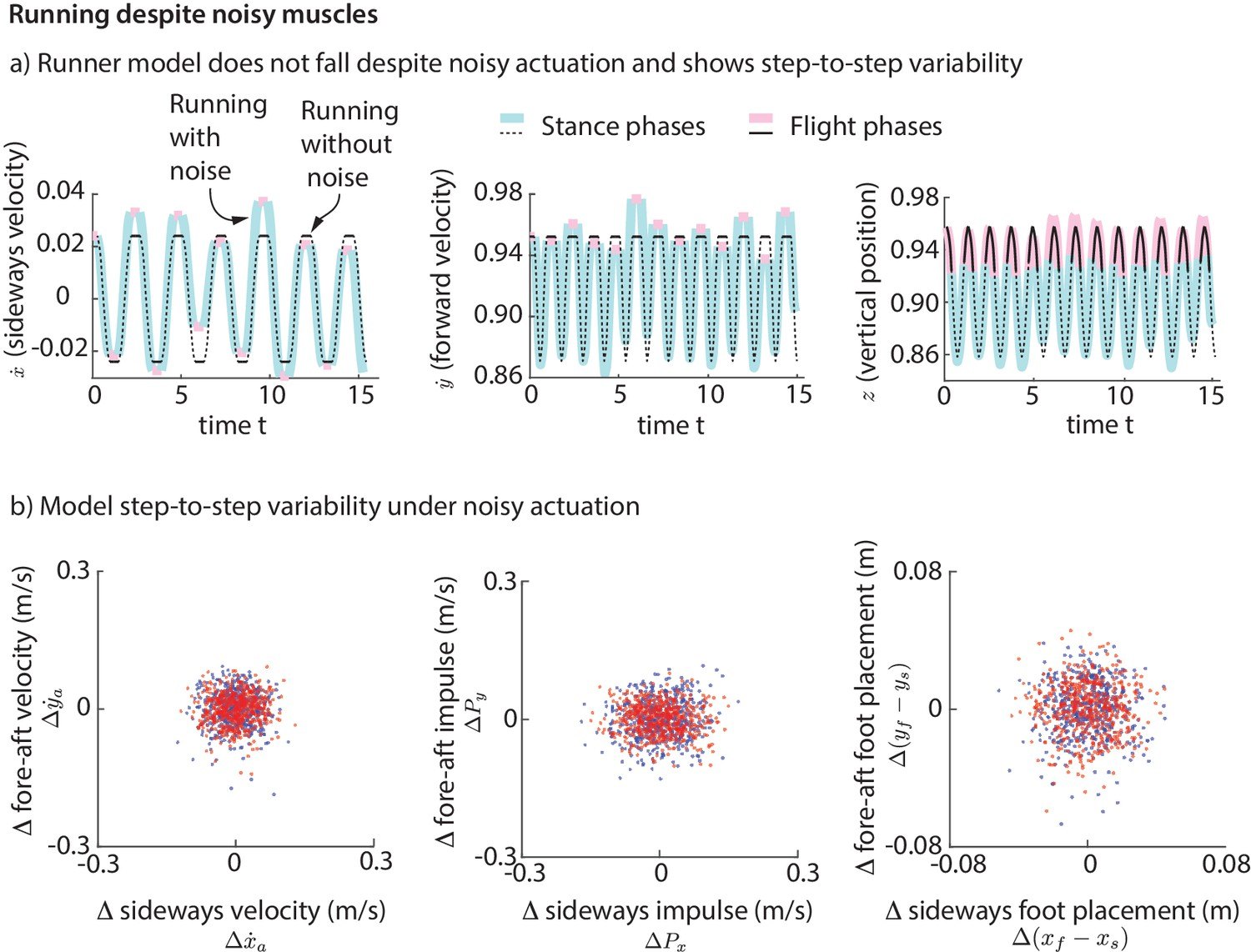 Step-to-step variations in human running reveal how humans