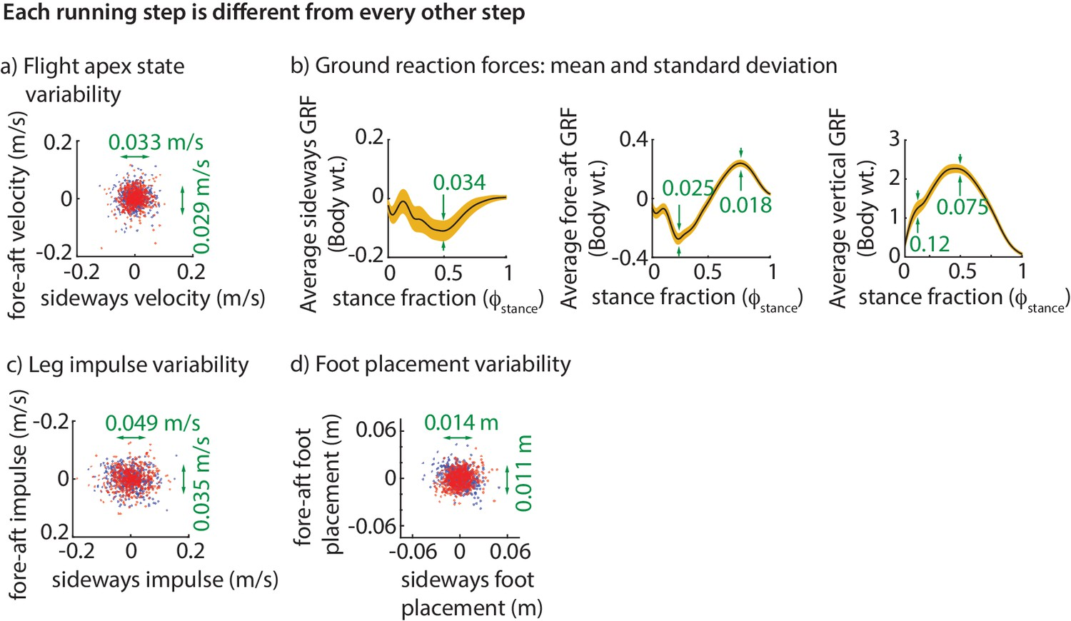 Step-to-step variations in human running reveal how humans run