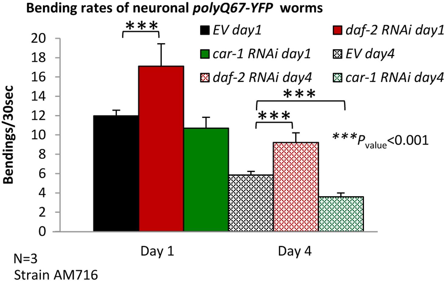 The insulin/IGF signaling cascade modulates SUMOylation to regulate