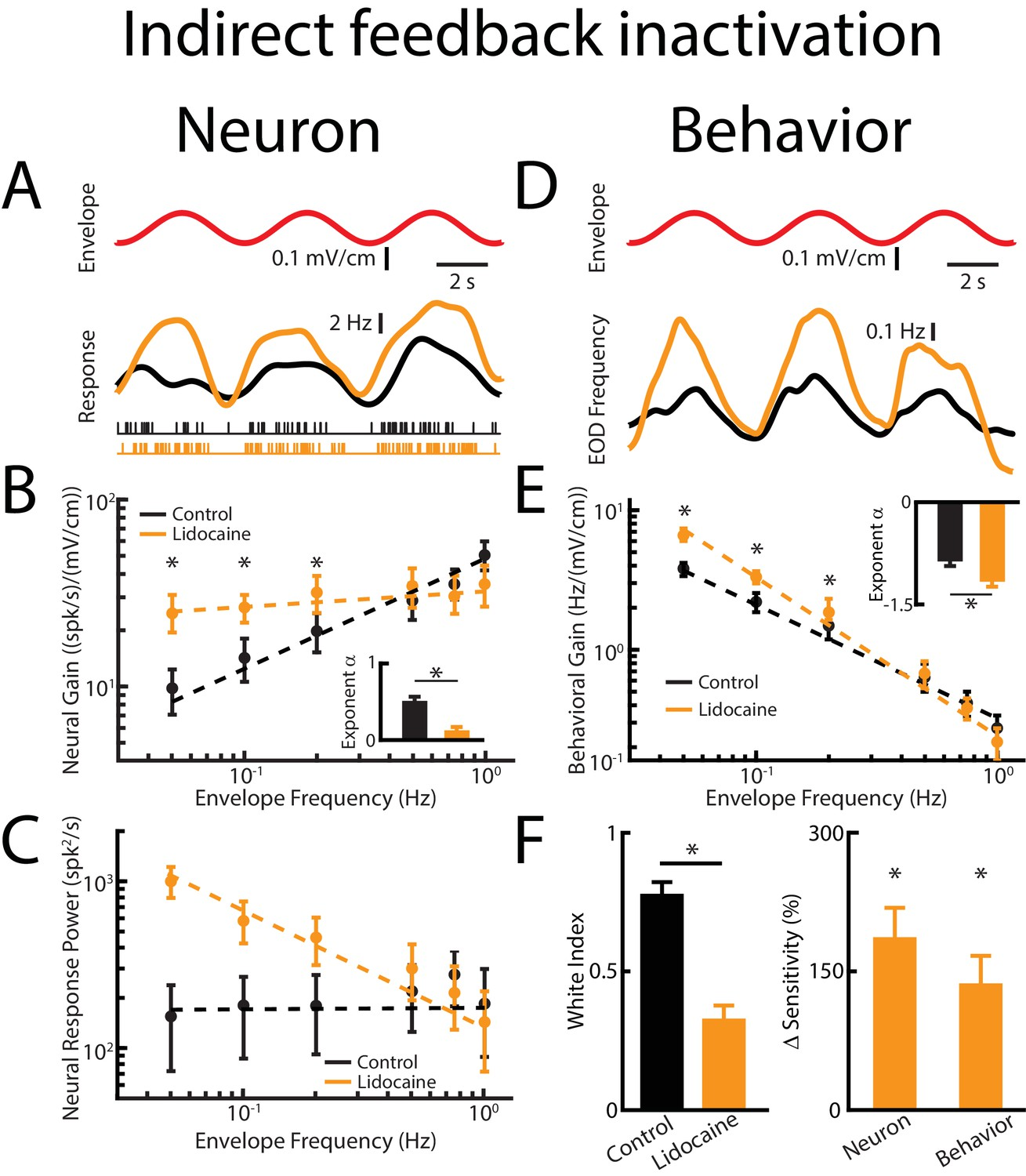 Feedback Optimizes Neural Coding And Perception Of Natural Stimuli Sensitive Envelope Detector Circuit Diagram Direct Input Enhances While Indirect Responses