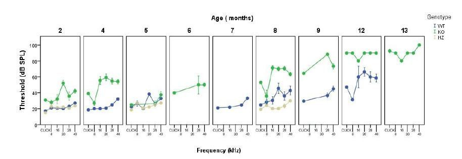 Deficit of mitogen-activated protein kinase phosphatase 1 (DUSP1