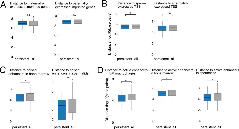 Intergenerational epigenetic inheritance of cancer