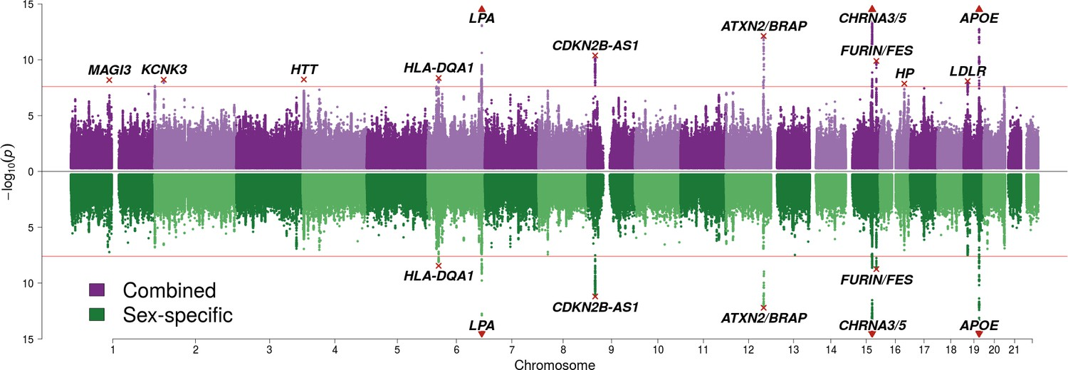 Genomics of 1 million parent lifespans implicates novel pathways and