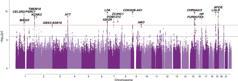 Genomics of 1 million parent lifespans implicates novel pathways and