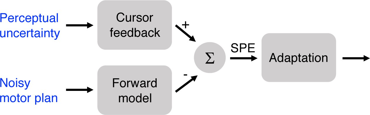 The influence of task outcome on implicit motor learning | eLife