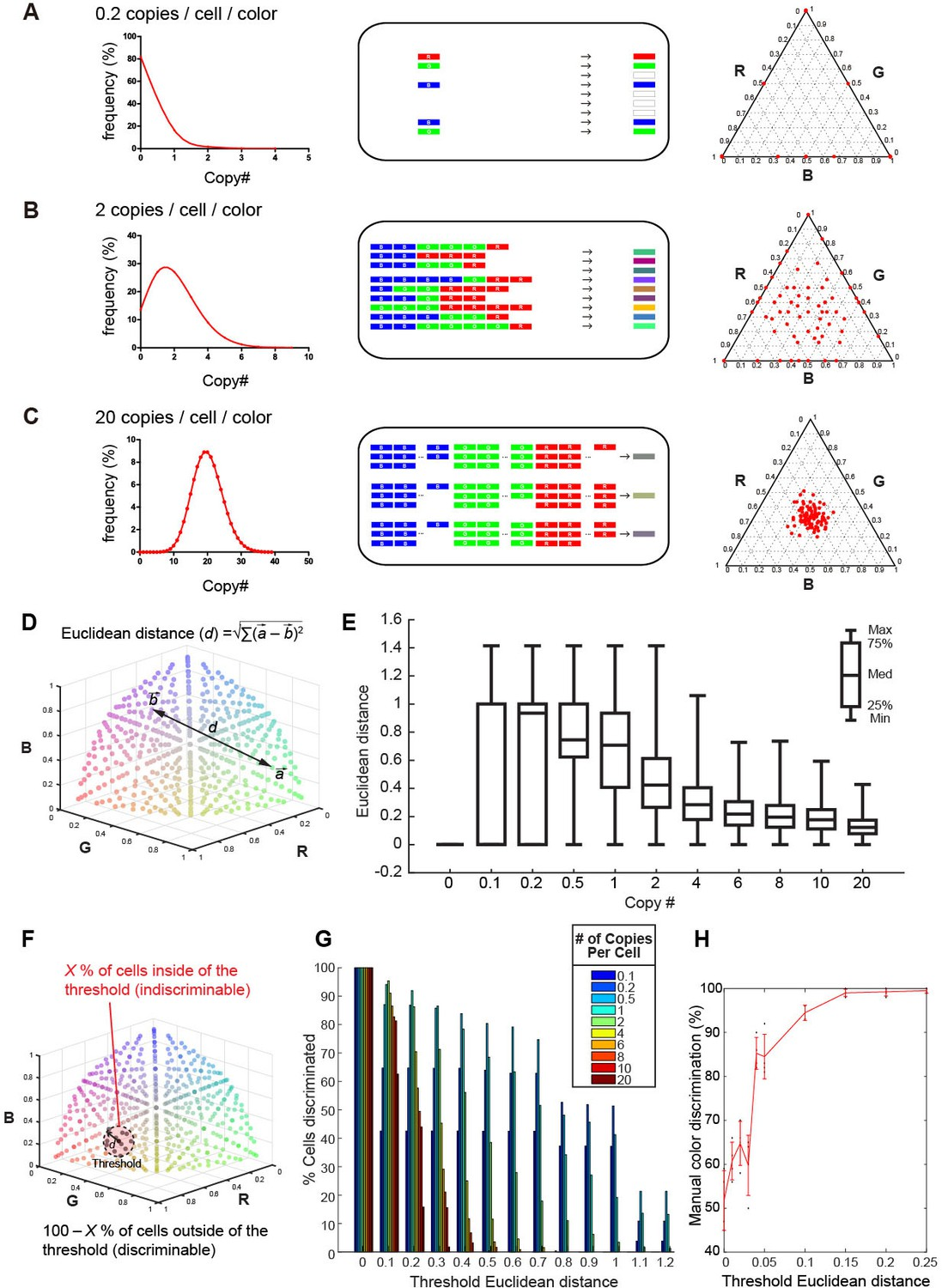 Bright multicolor labeling of neuronal circuits with