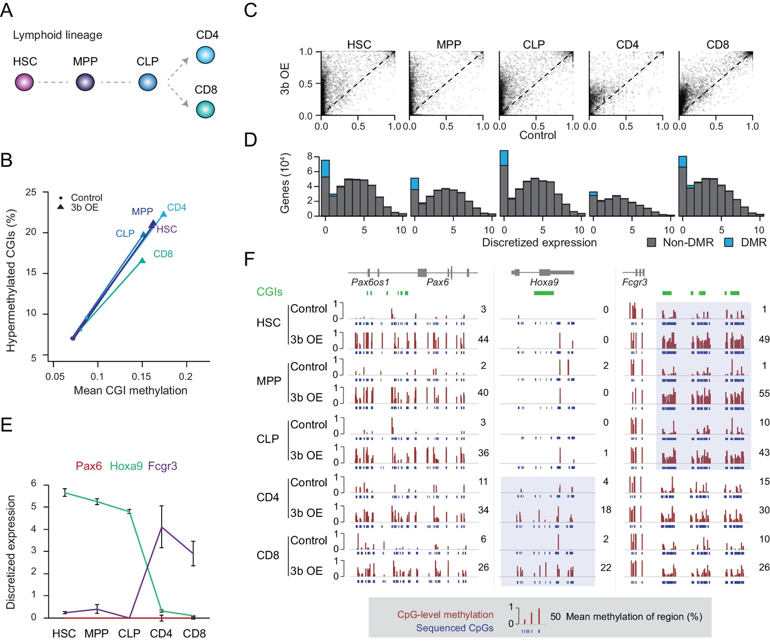 Targets and genomic constraints of ectopic Dnmt3b expression ... on