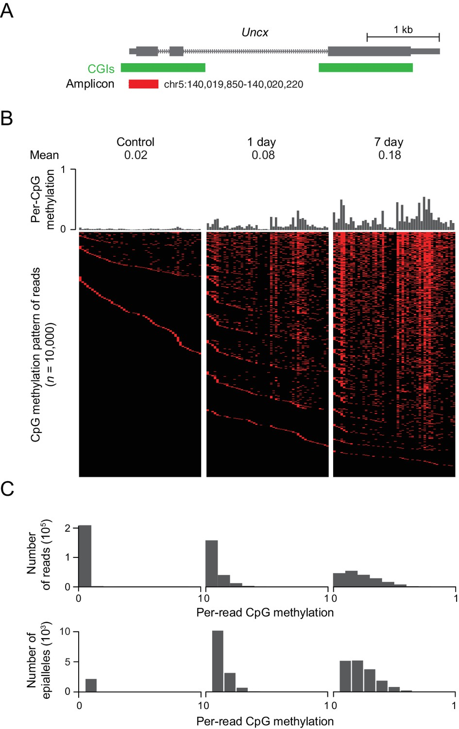 Targets and genomic constraints of ectopic Dnmt3b expression