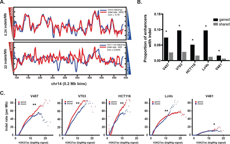 Mismatch repair-signature mutations activate gene enhancers