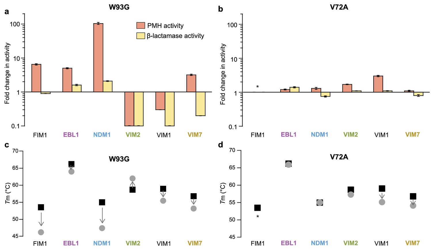 Cryptic genetic variation shapes the adaptive evolutionary potential