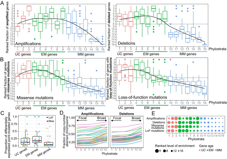 Somatic mutations in early metazoan genes disrupt regulatory