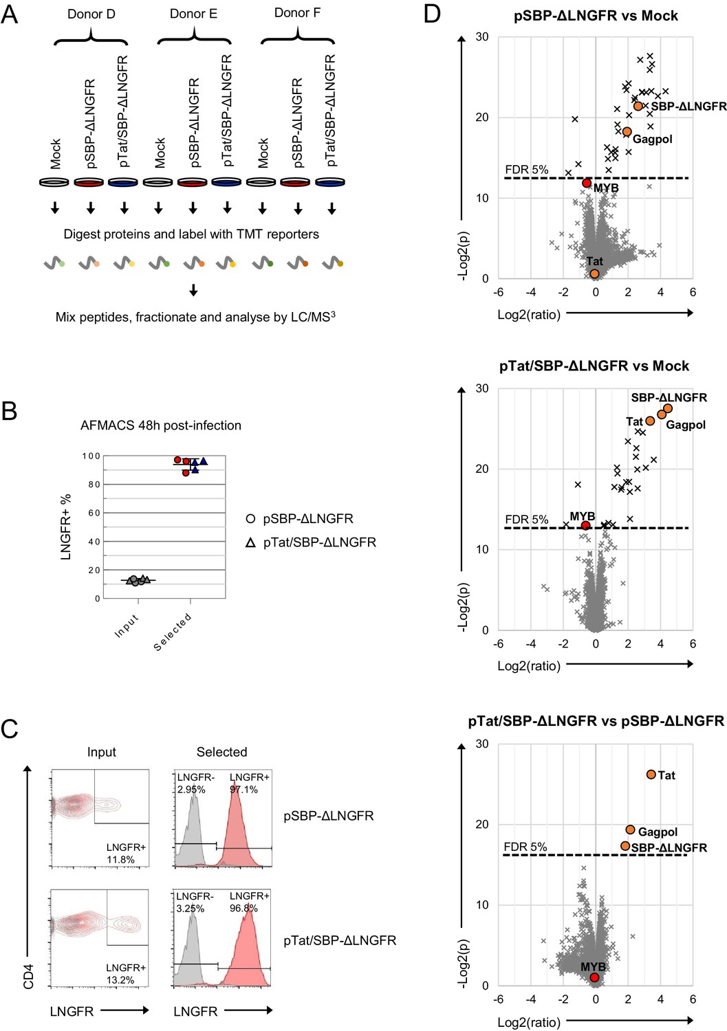 Functional proteomic atlas of HIV infection in primary human CD4+ T