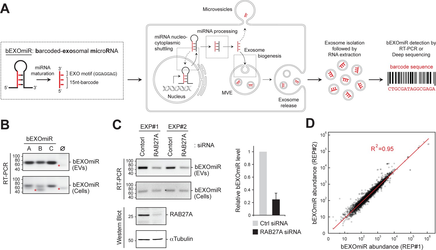 Genome-wide interrogation of extracellular vesicle biology