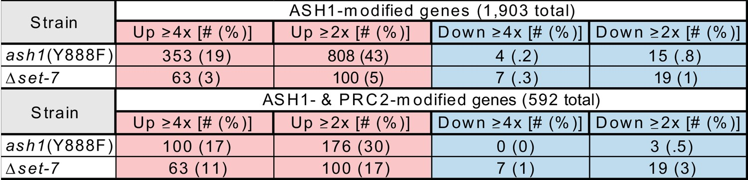 ASH1-catalyzed H3K36 methylation drives gene repression and