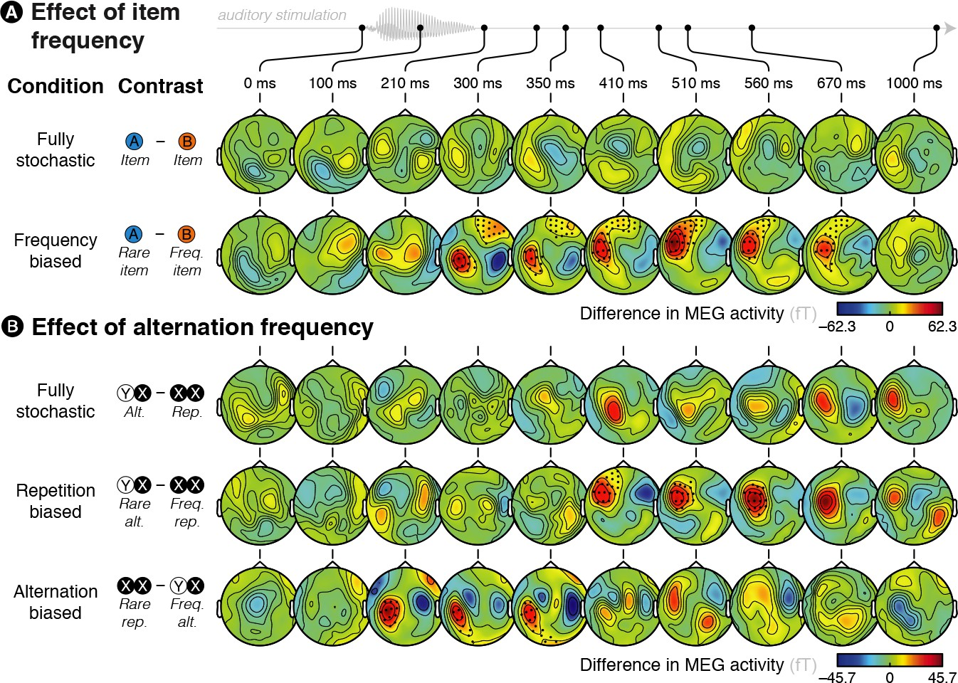 Distinctive Brain Pattern May Underlie >> Brain Signatures Of A Multiscale Process Of Sequence Learning In