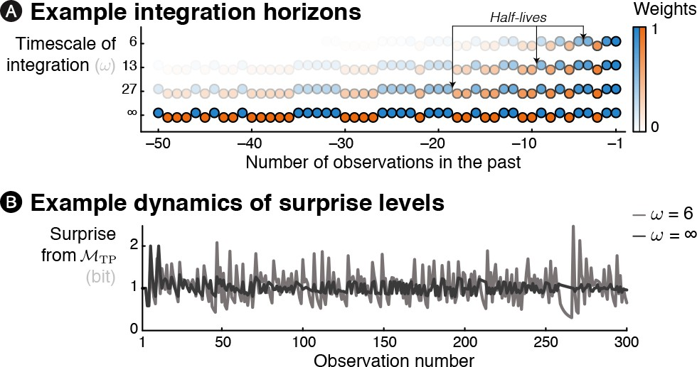 Brain signatures of a multiscale process of sequence learning in