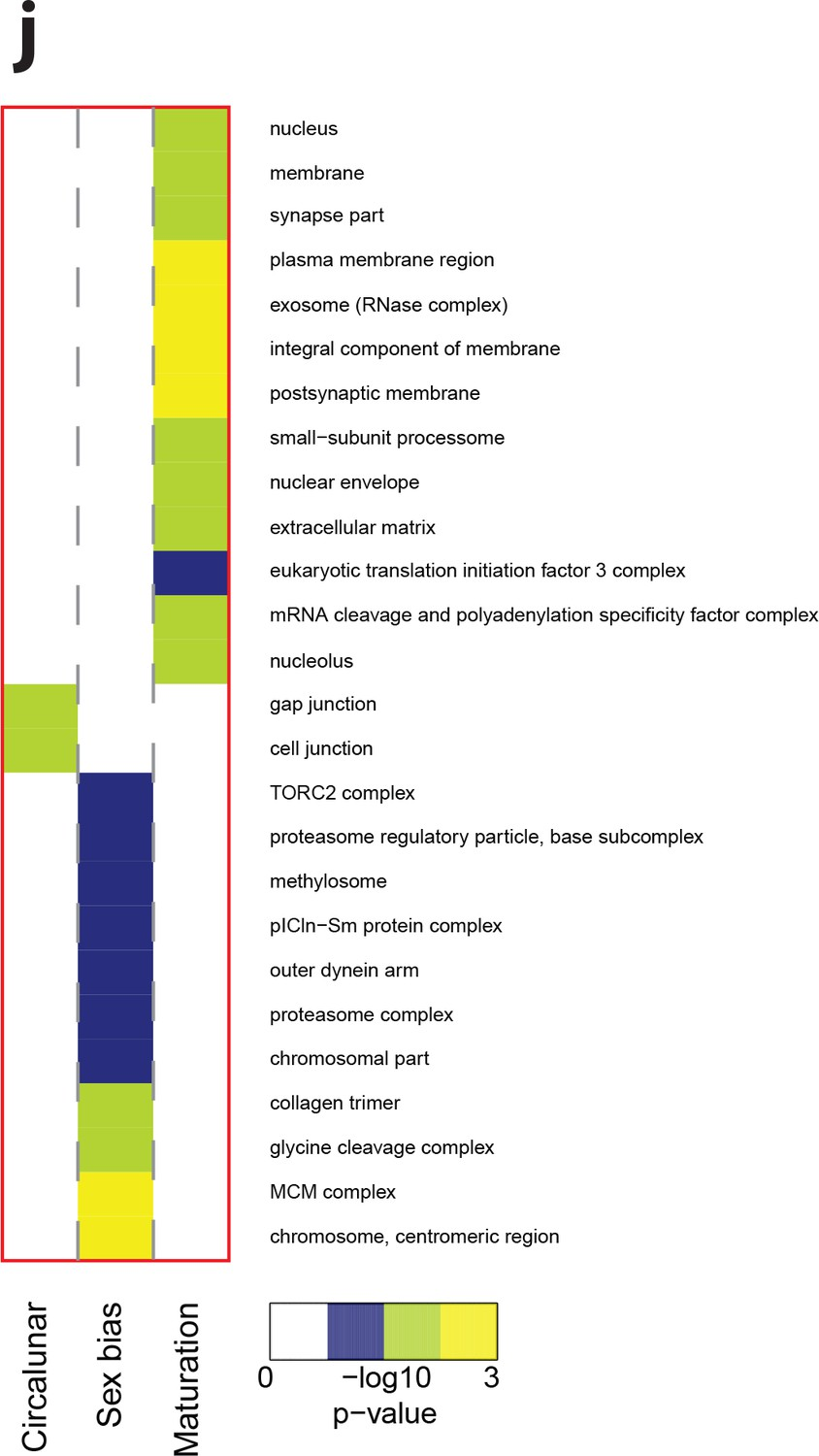 Combined transcriptome and proteome profiling reveals