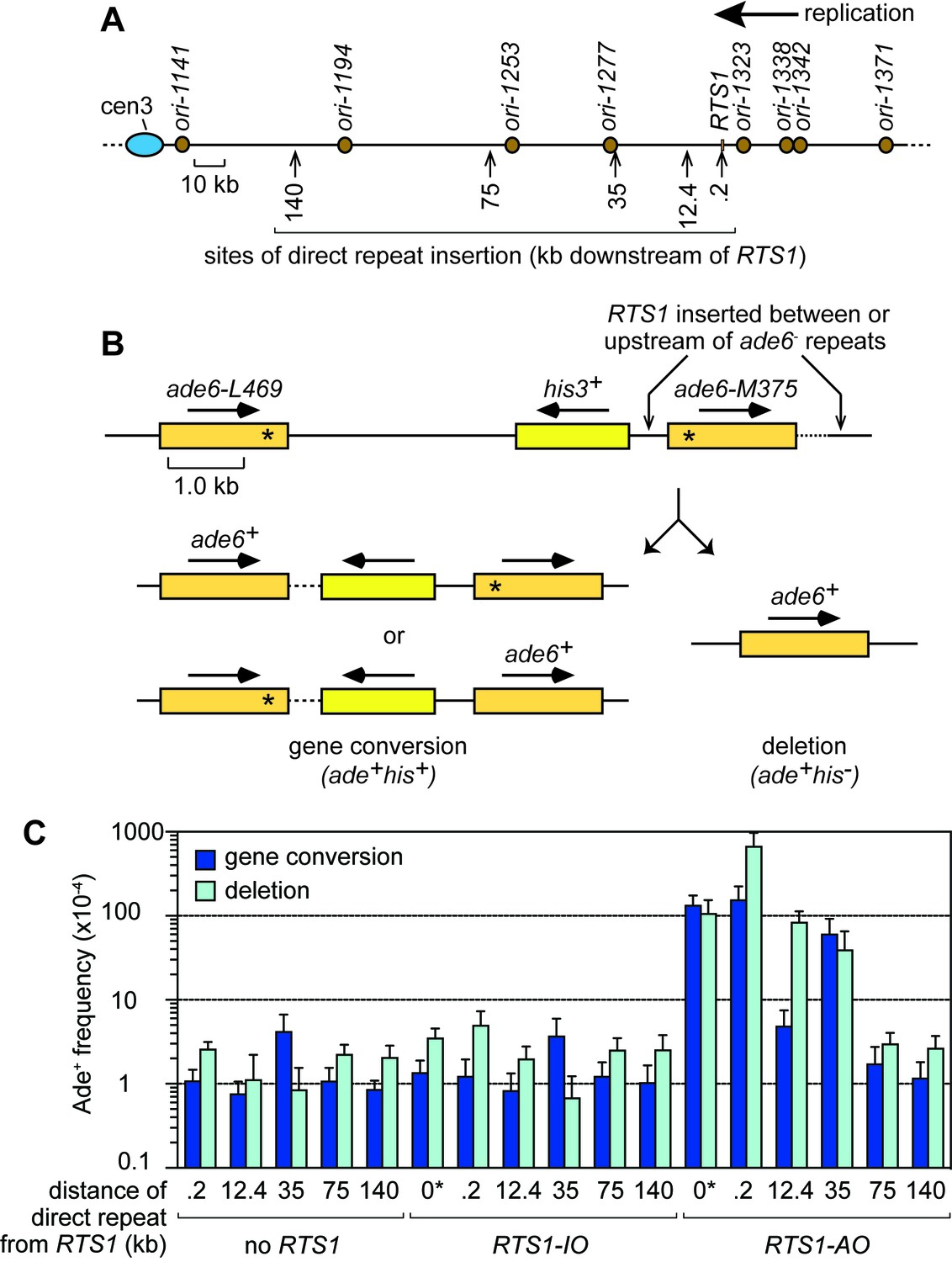 Factors affecting template switch recombination associated