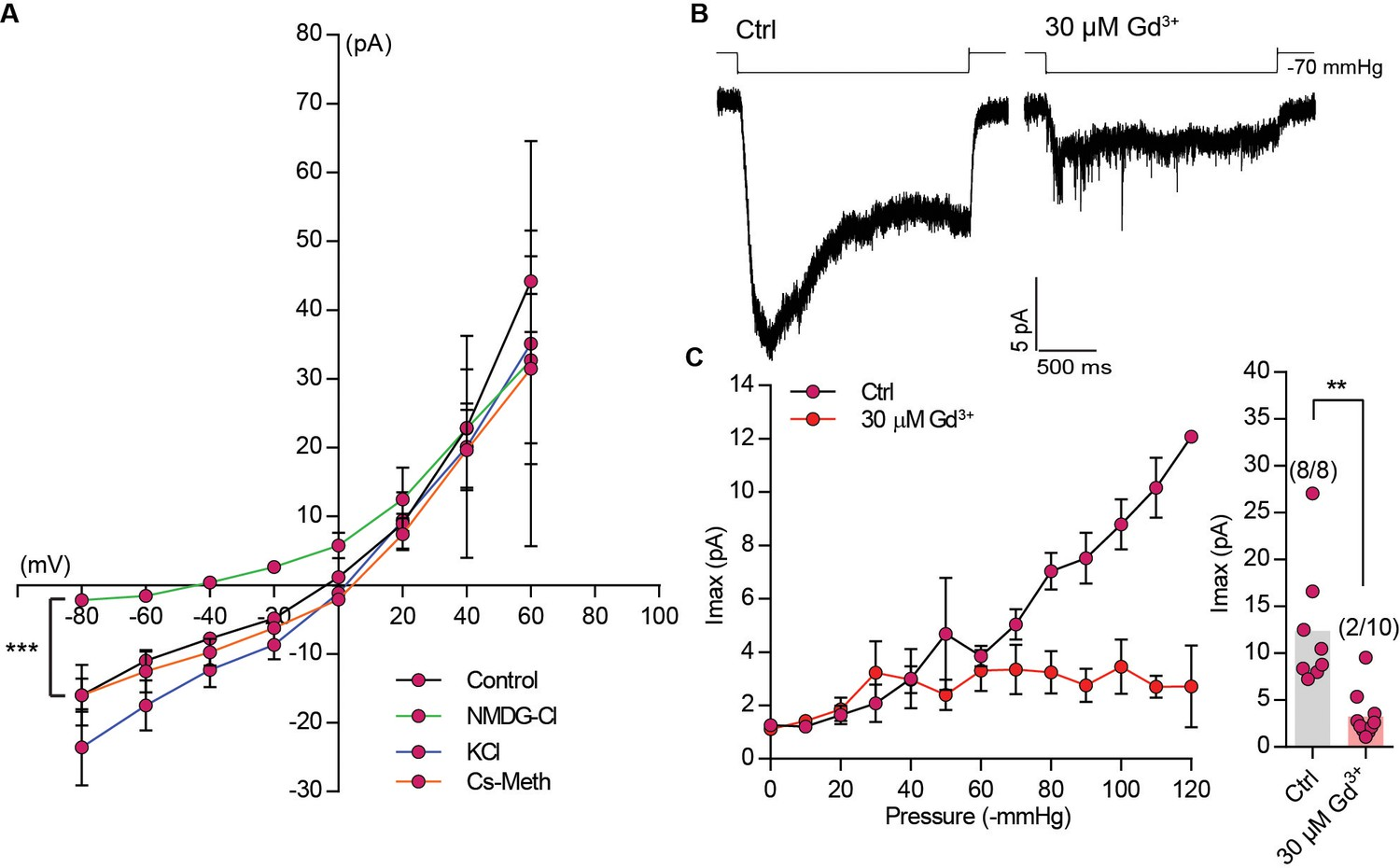 OSCA/TMEM63 are an evolutionarily conserved family of