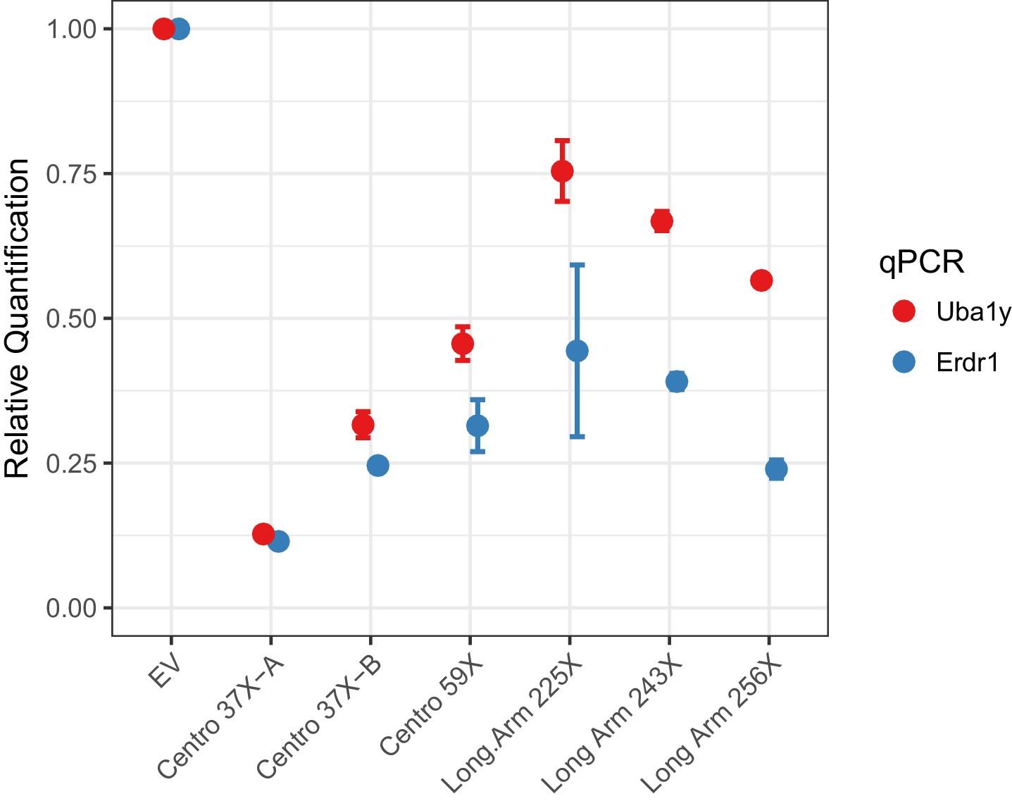 A Y-chromosome shredding gene drive for controlling pest vertebrate