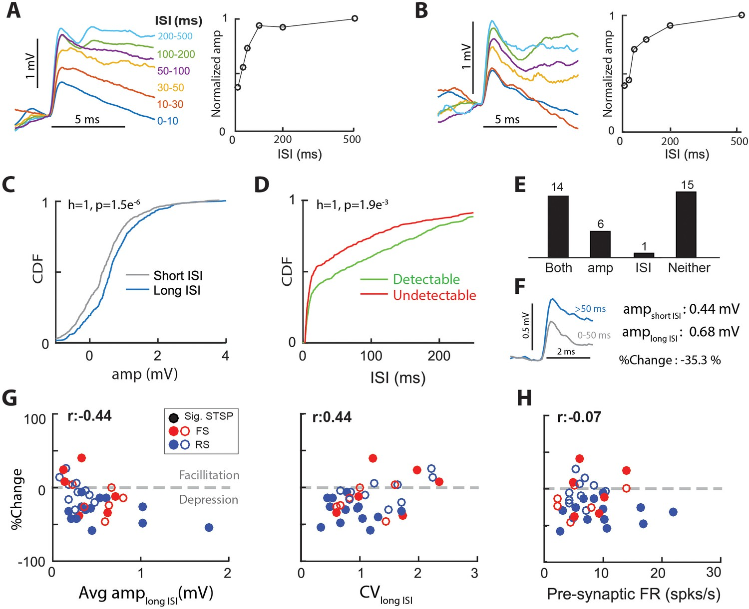 Thalamocortical synapses in the cat visual system in vivo