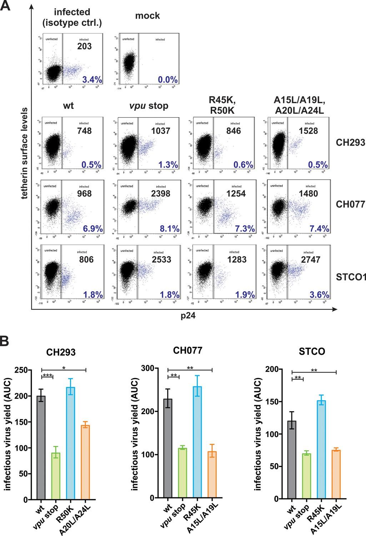 HIV-1 Vpu is a potent transcriptional suppressor of NF-κB-elicited