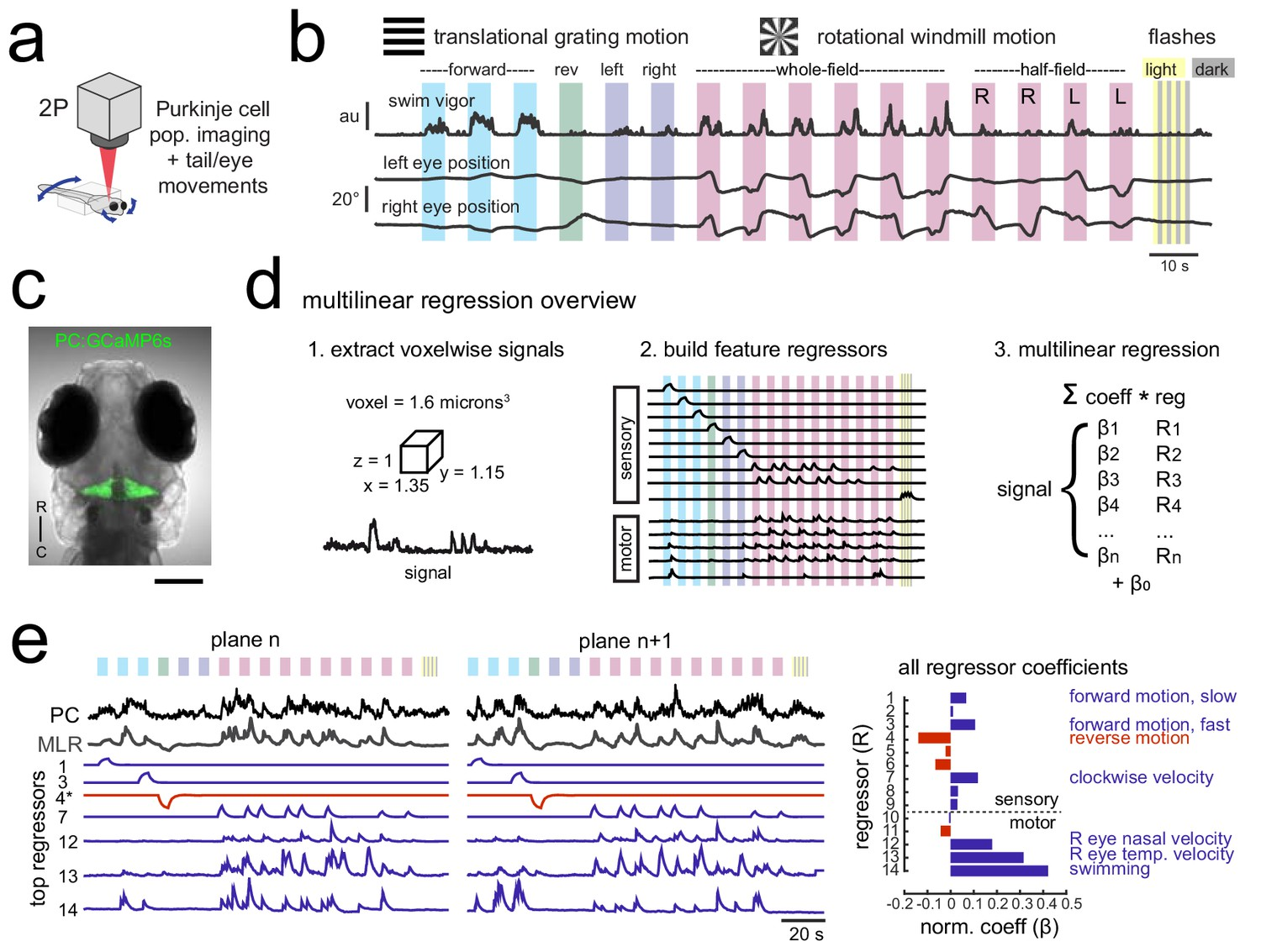 Motor context dominates output from purkinje cell functional regions