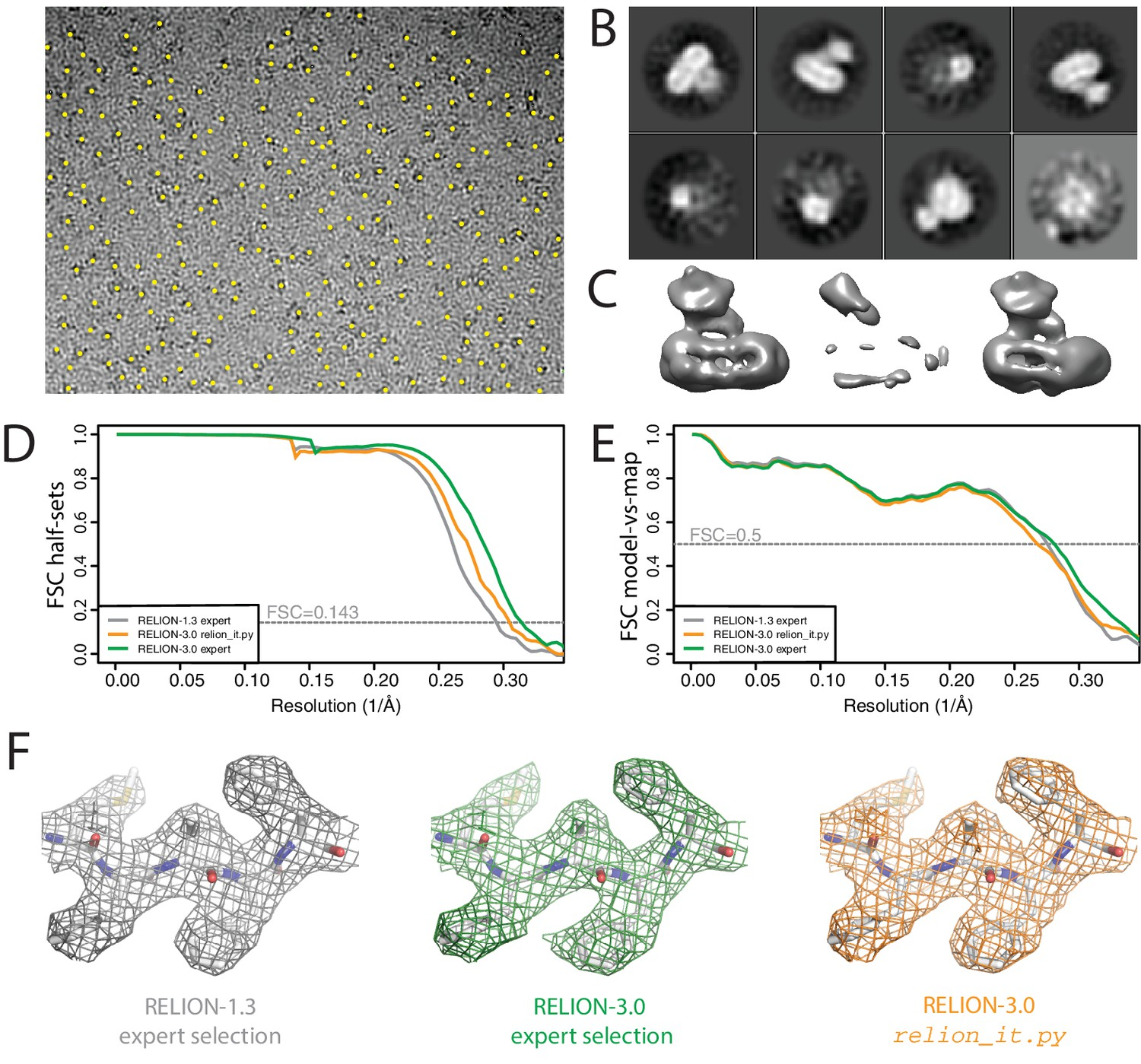 New tools for automated high-resolution cryo-EM structure