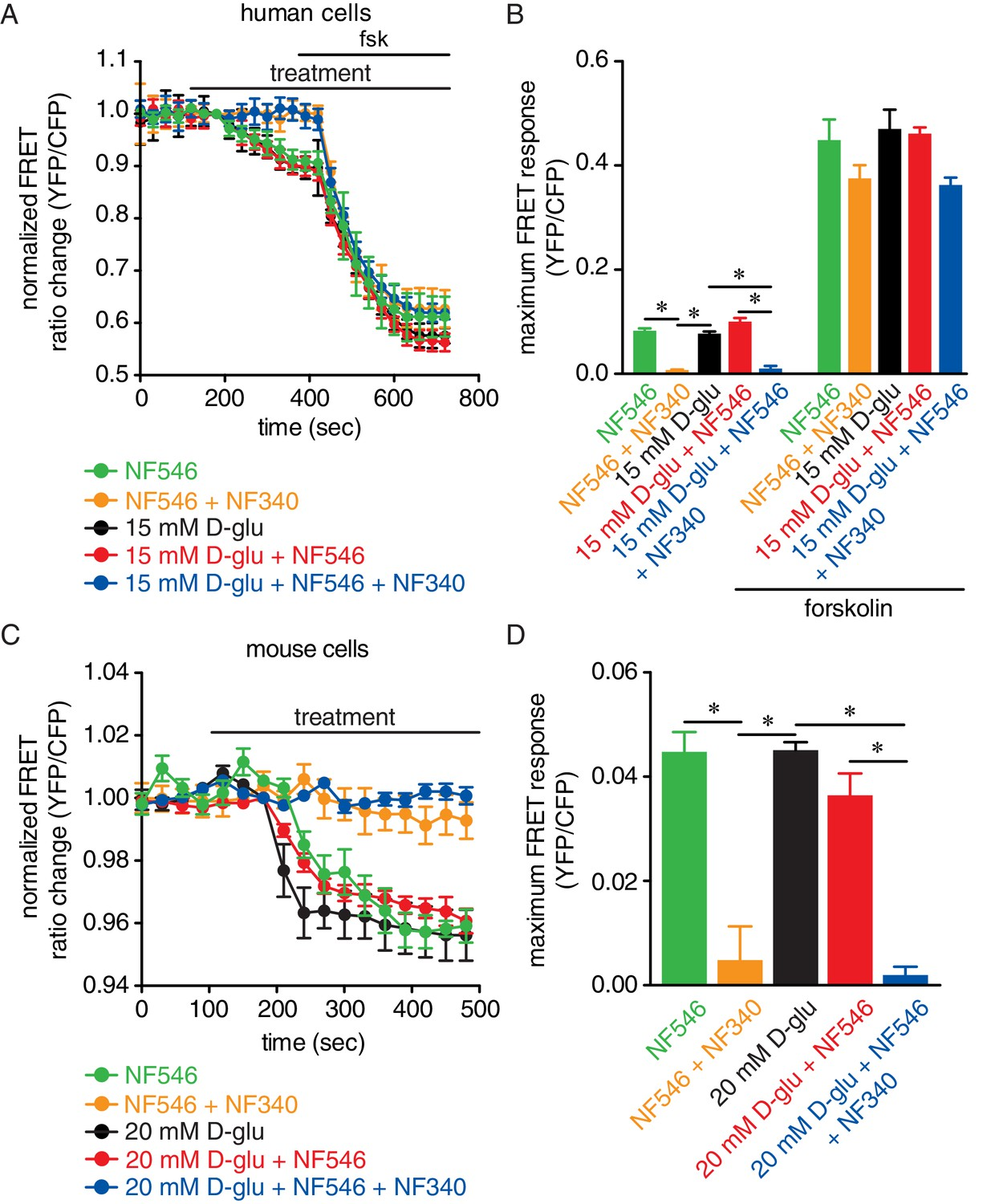 A Gs-coupled purinergic receptor boosts Ca2+ influx and