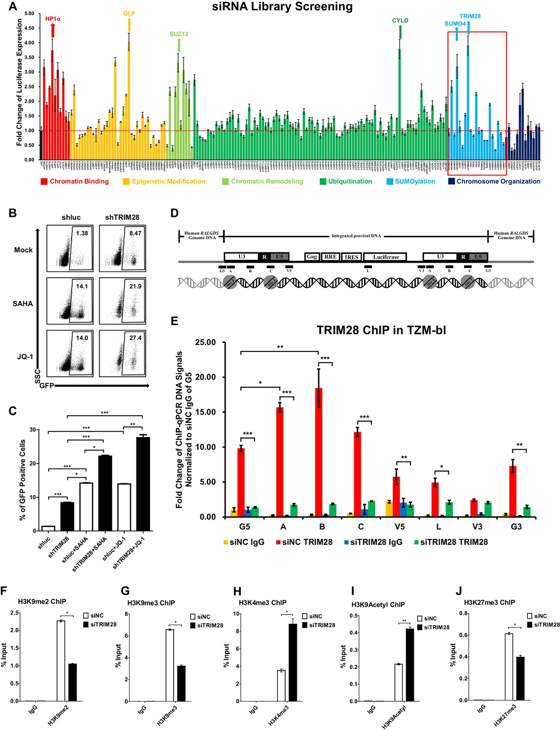 229022e2b TRIM28 promotes HIV-1 latency by SUMOylating CDK9 and inhibiting P ...
