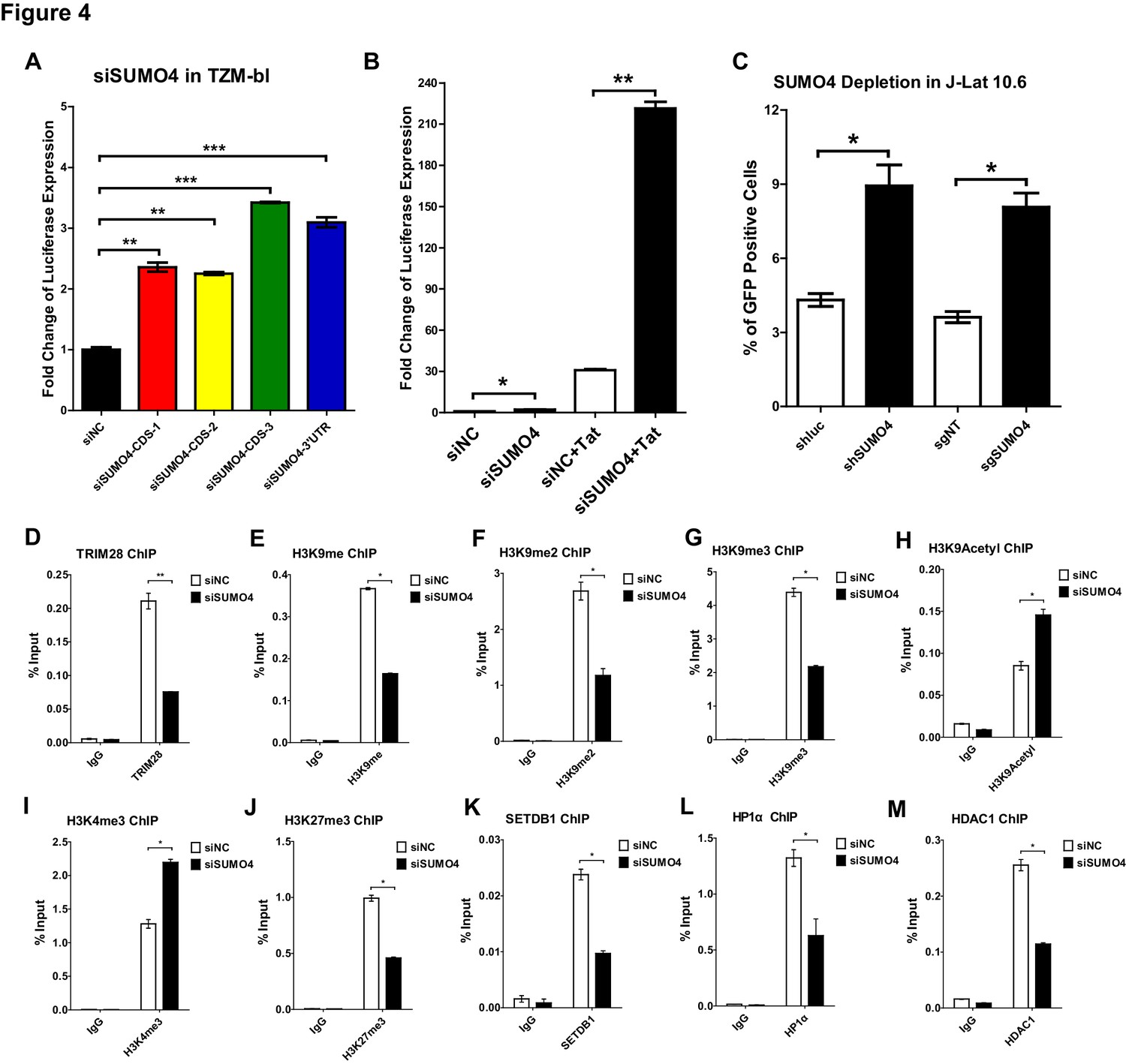 TRIM28 promotes HIV-1 latency by SUMOylating CDK9 and inhibiting P