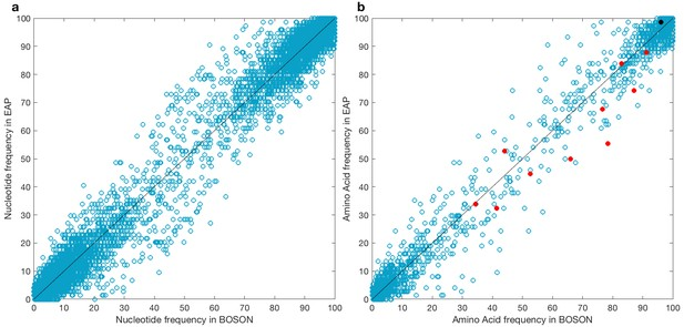 Interferon lambda 4 impacts the genetic diversity of