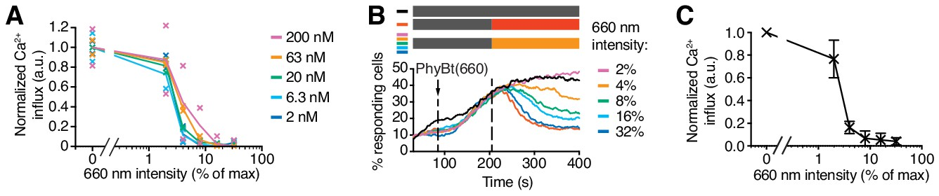 Optogenetic control shows that kinetic proofreading regulates the