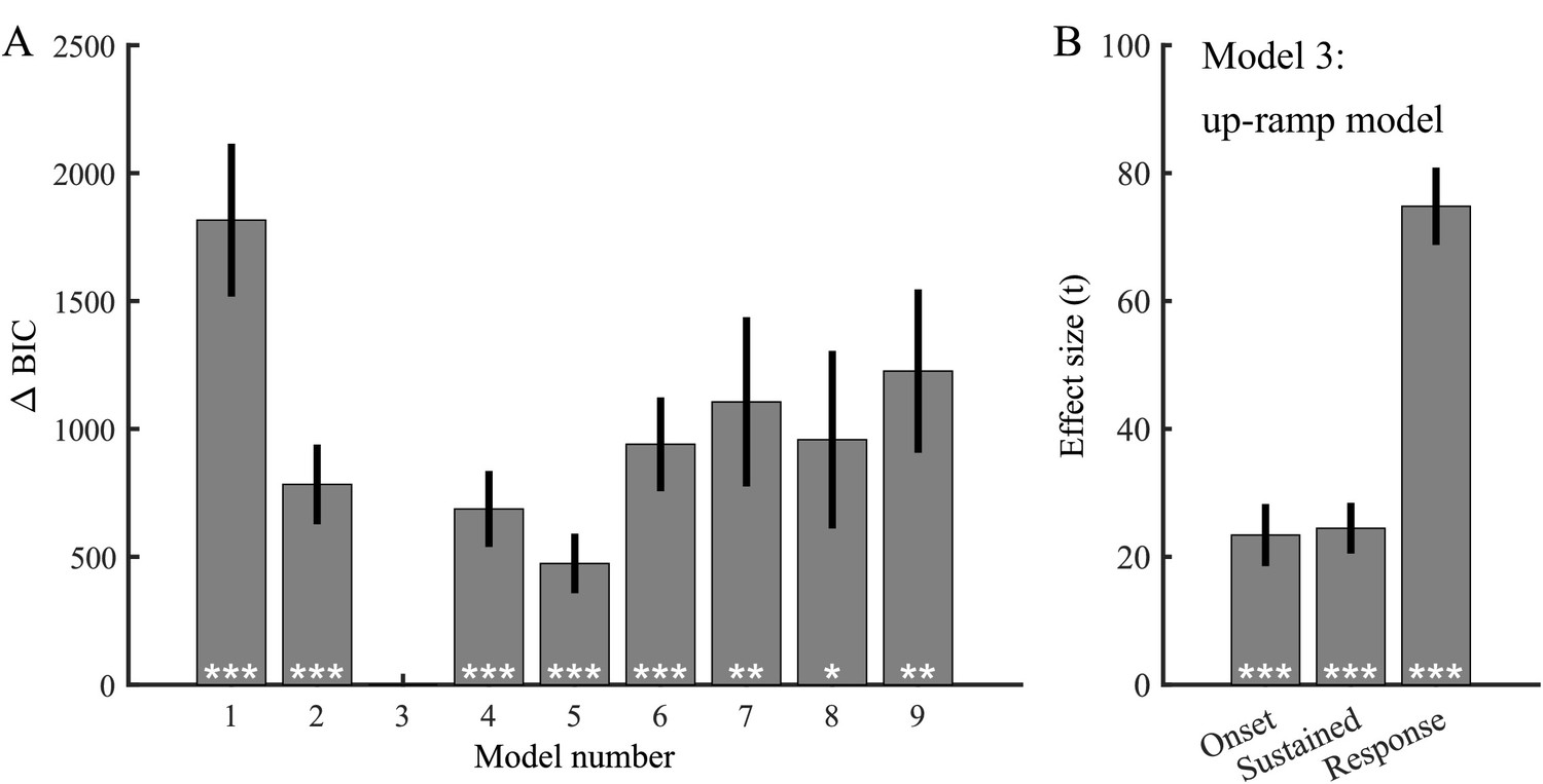 Behavioural and neural signatures of perceptual decision-making are